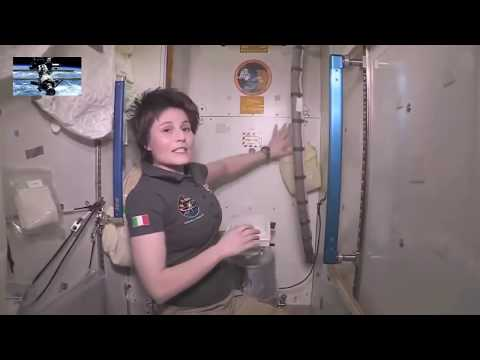 Астронавтка рассказала о сложностях хождения в туалет в космосе