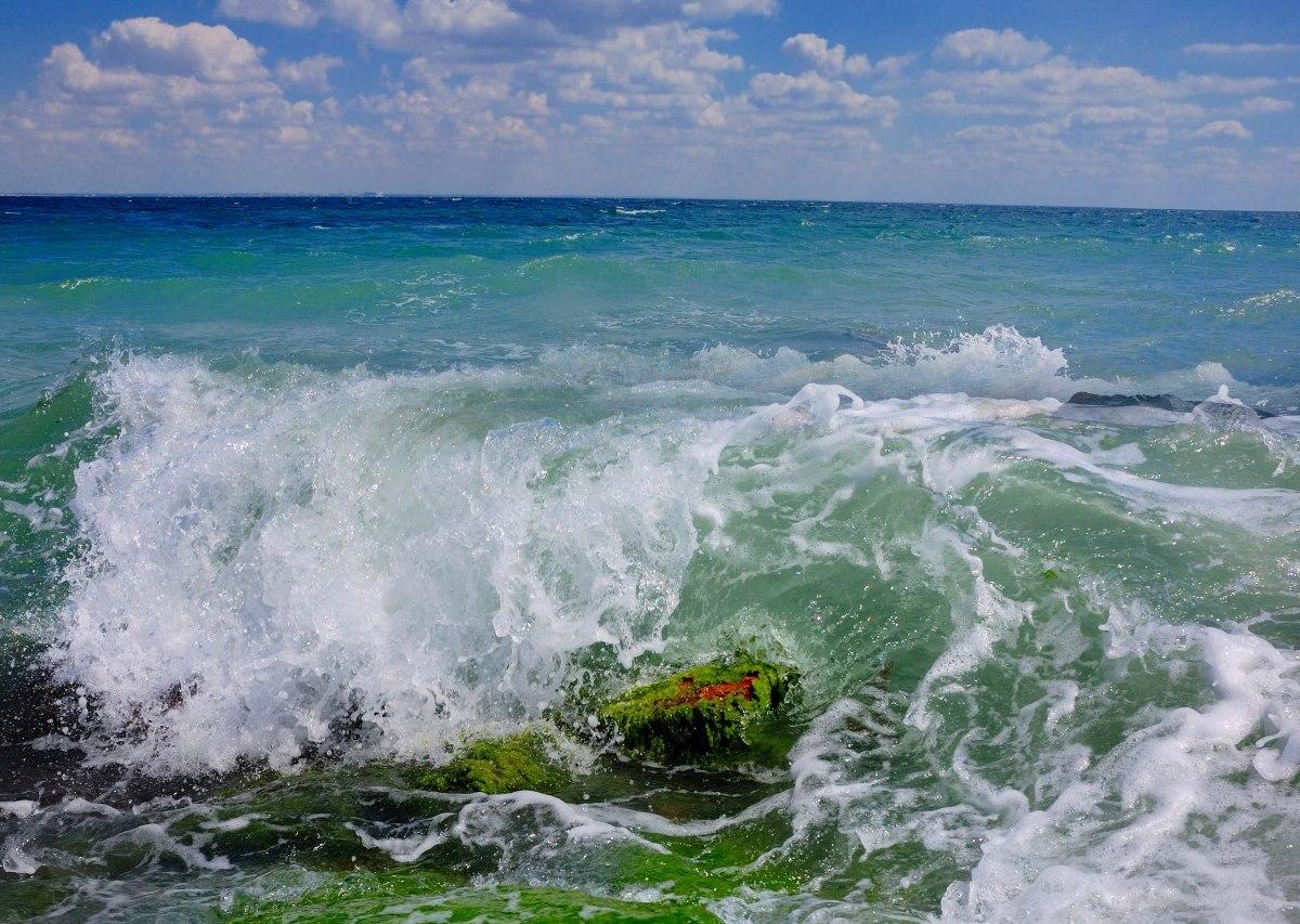 Лишь 13% пляжей Крыма получили санитарные заключения о готовности к курортному сезону