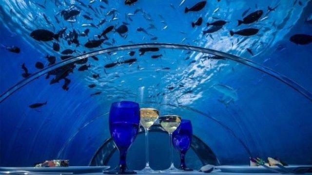 Шесть метров под водой: стеклянный ресторан на Мальдивах