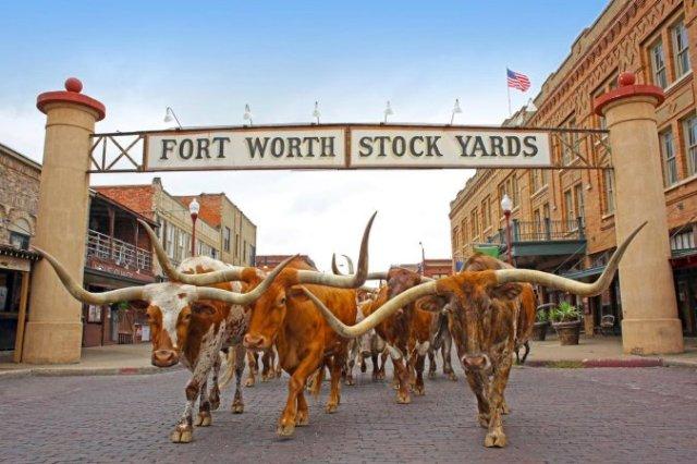 Самый американский штат США: в Техасе все большое!