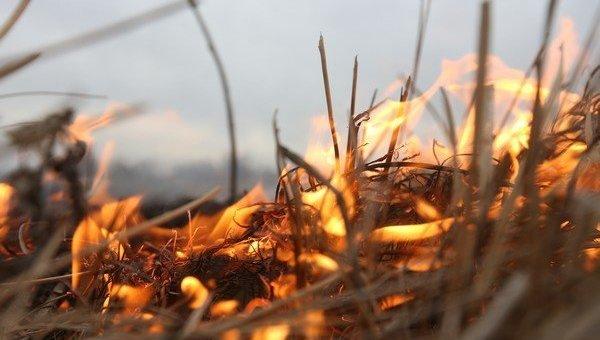 В Крыму продлили режим высокой пожароопасности