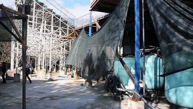 Владельцу дельфинария в Ялте грозит новый штраф за отказ сносить постройки