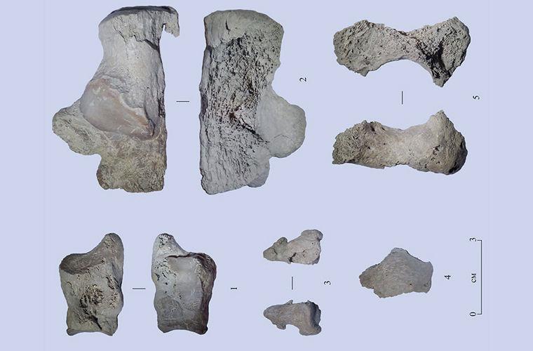 В Бурятии нашли древнейшие в Азии останки человека