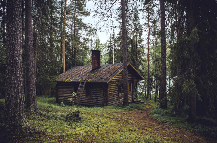 Работа мечты:  отшельник в лесу