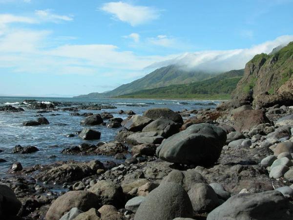 В Сахалинской области создадут на «дальневосточных гектарах» природный парк «Мыс Тихий»