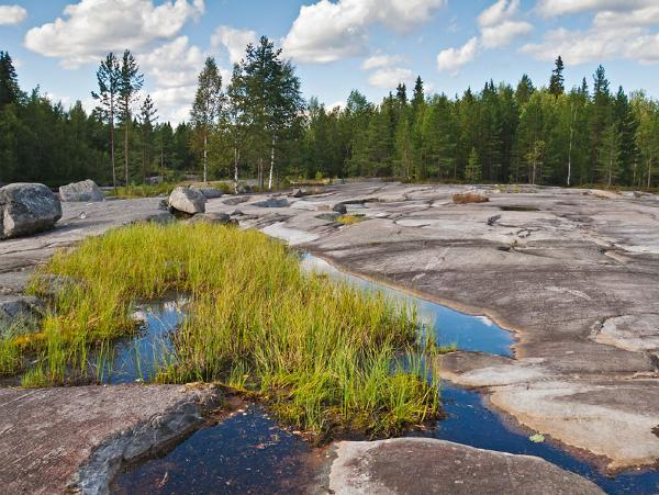Туркластер «Беломорье» в Заполярье претендует на включение в ФЦП по развитию туризма