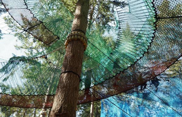 В провинции Жирона появился город на деревьях
