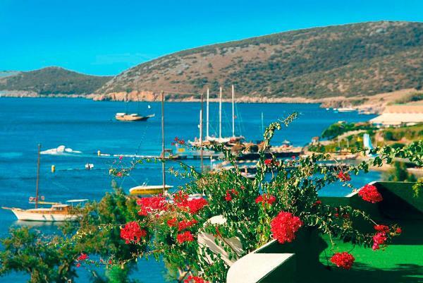 Туроператоры отмечают высокий спрос россиян на поездки в Турцию, несмотря на рост цен