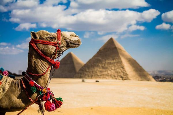 Эксперты определили основные проблемы турбизнеса Египта