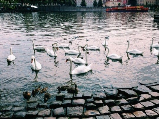 Прага- место, куда вы вернётесь