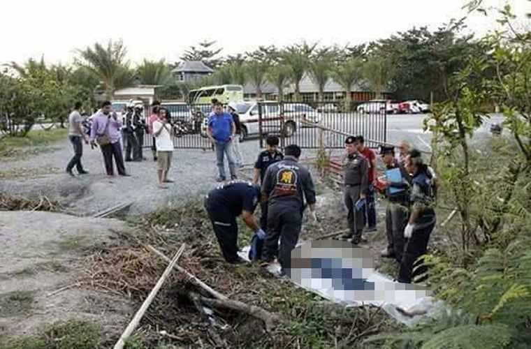 Китайский турист в Таиланде потянул за хвост слона и тот растоптал гида и покалечил туристов
