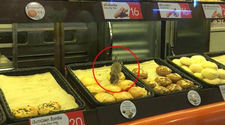 Туристы в Таиланде доедают еду за крысами [ВИДЕО]