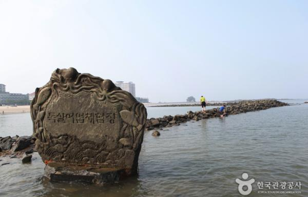 «Чудо Моисея»: фестиваль загадочного побережья Мучханпхо в Порёне