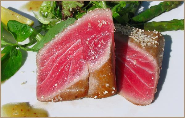 Дни красного тунца начались в Испании
