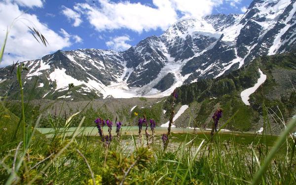 В Чечне стартовал первый летний сезон на курорте «Ведучи»