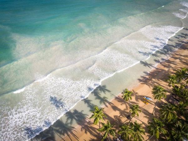 Пунта-Кана лидирует в рейтинге самых популярных городов для отдыха