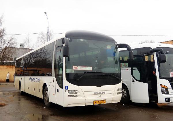 Названы самые популярные у туристов автобусные направления