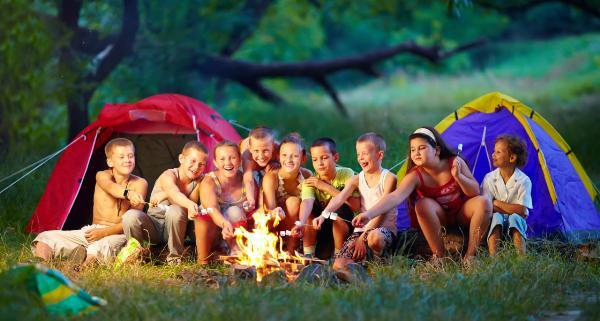 Власти Ставрополья и Владимирской области будут совместно развивать детский туризм