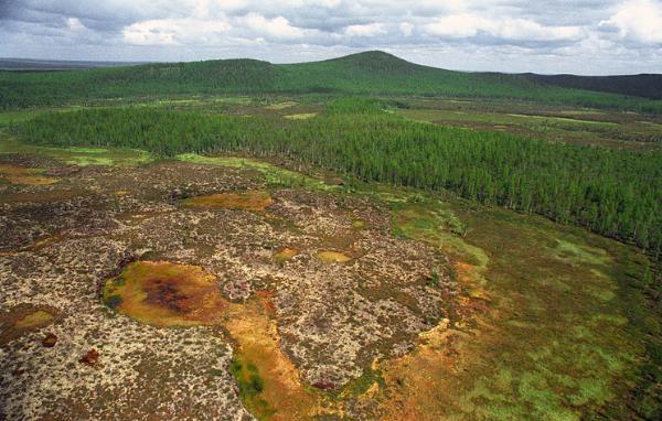 Место падения тунгусского метеорита может стать туристическим центром