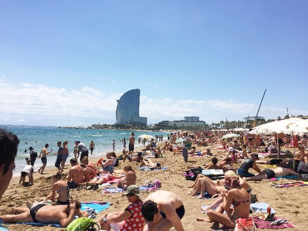 На пляже Барселоны найдены сотни мертвых рыб