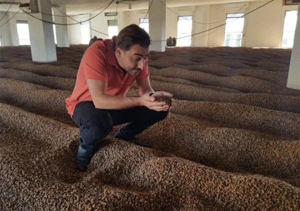 Casa Cacao - новый проект братьев Рока