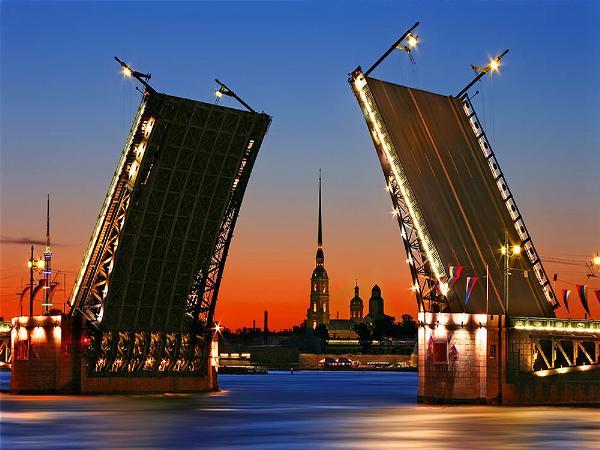 Полтавченко предложил выдавать электронные визы туристам, прилетающим в Петербург на три дня