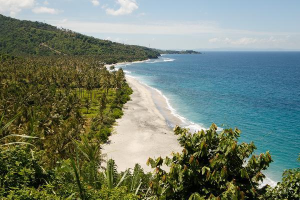 Мониторинг ситуации на острове Ломбок: опасности цунами нет, аэропорт работает