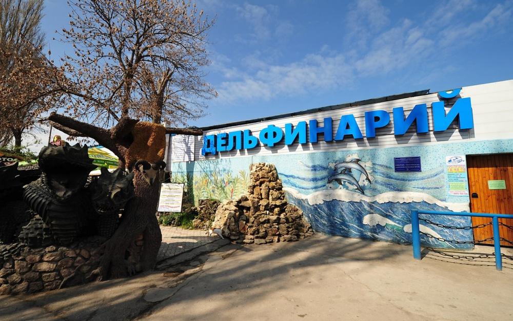 Дельфины покинули севастопольский дельфинарий