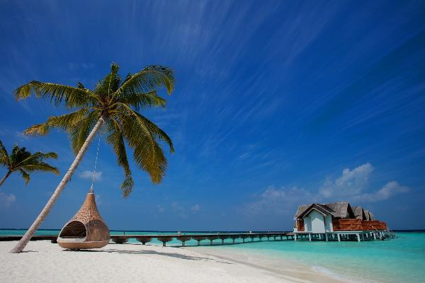 Мальдивский курорт установил шреддер для паспортов