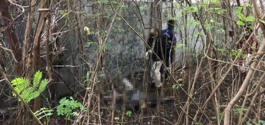 В Таиланде погиб россиянин — объявлен поиск родственников (ВИДЕО)