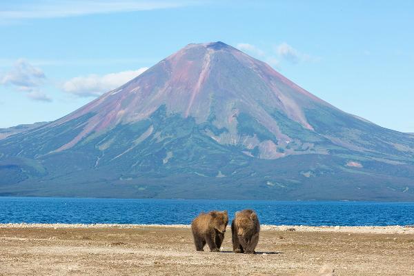 Инвесторы и эксперты высоко оценили потенциал туризма на Камчатке