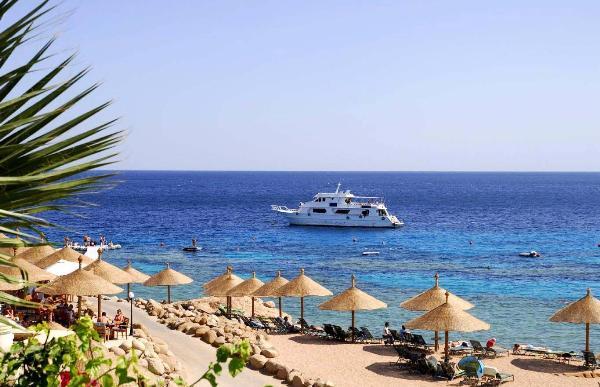 Туроператоры и авиакомпании могут быстро организовать туры в Египет