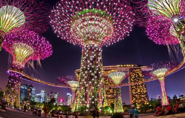 В Сингапуре знаменитые Сады у залива превратятся в неоновые джунгли
