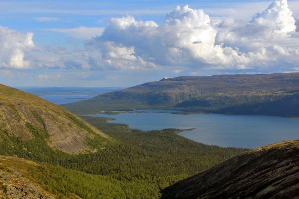 Первая детская экологическая тропа создана в Лапландском заповеднике в Мурманской области