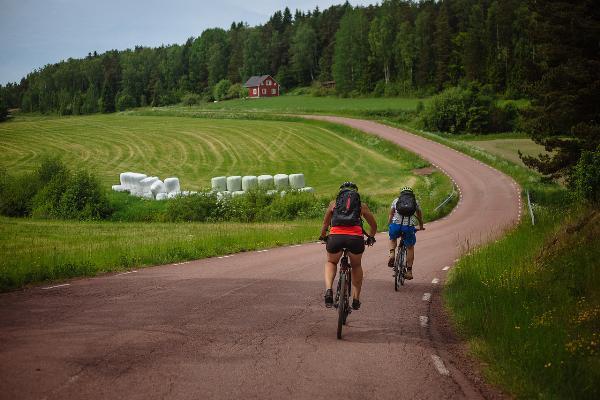 От Светогорска построят велодорожку до Финляндии