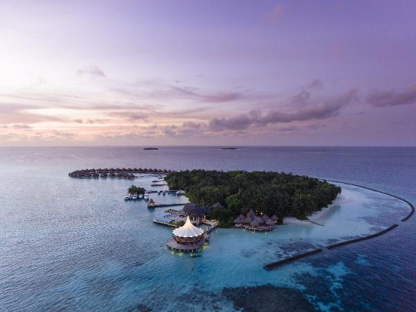 Время романтики в Baros Maldives