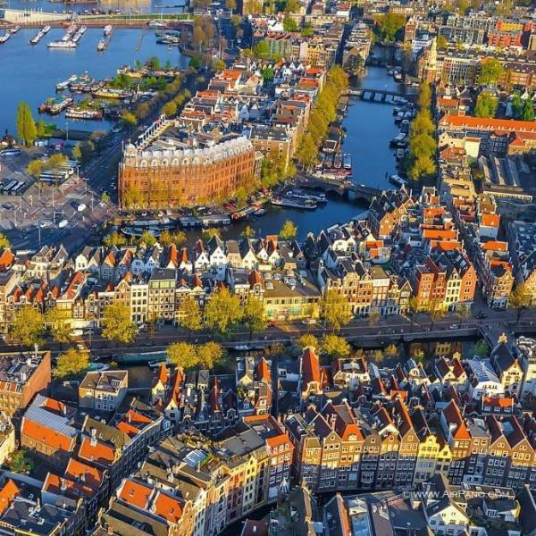 В Амстердаме крыши домов станут «сине-зелеными»