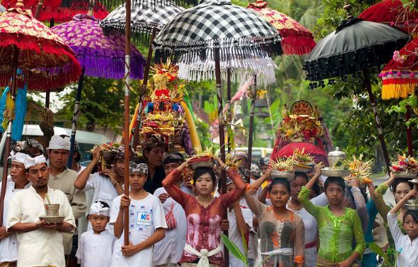 Власти Бали опровергли сообщения о вспышке японского энцефалита