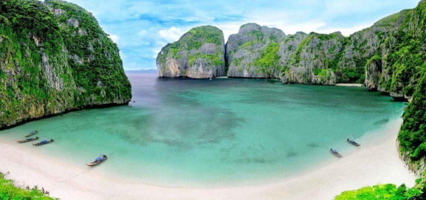 Сотни акул появились в заливе Майя Бэй в Таиланде (ВИДЕО)