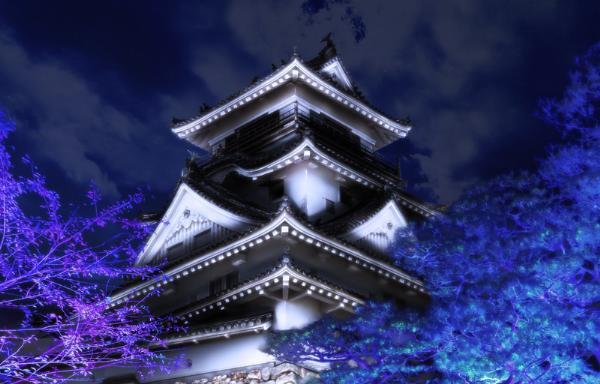 В Японии в замке Коти открылась уникальная интерактивная выставка
