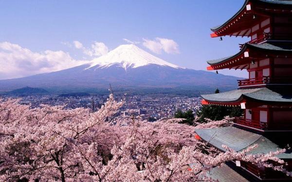 Японию посетило рекордное количество туристов в 2018 году — более 30 млн