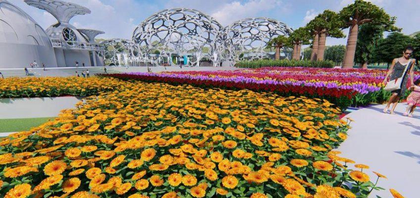 Новый цветочный парк Flower Land в Паттайе