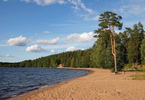 Ученые рассказали о загрязнении пляжей и водоемов Северо-Запада микропластиком