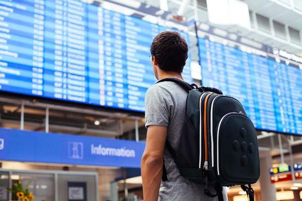 Более 300 обращений от туристов поступило на горячую линию ОП РФ в каникулы