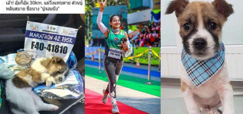 Марафон со щенком на руках в Таиланде (ВИДЕО)