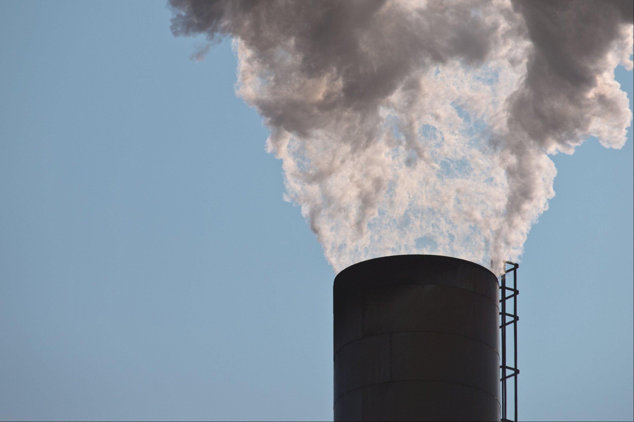 Архитекторы работают над защитой окружающей среды